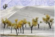 Cold Desert of Skardu Pakistan