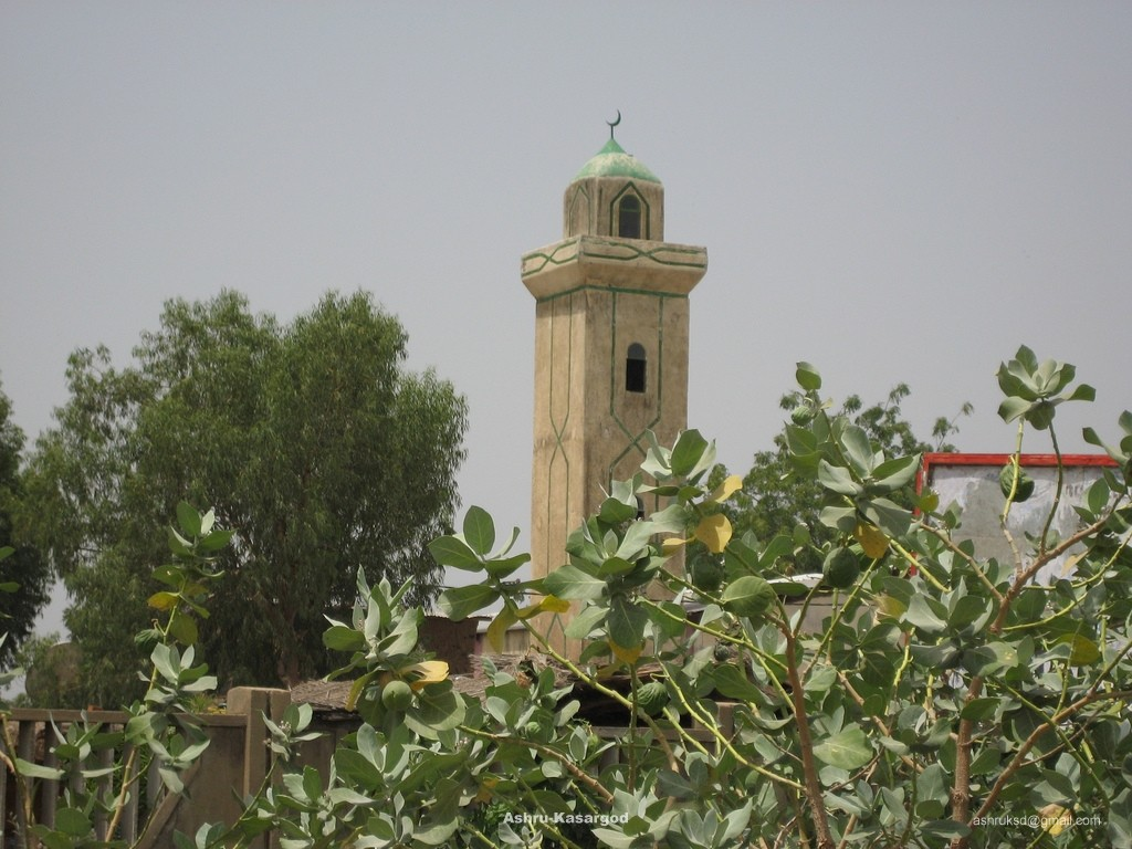Mosque in Chad